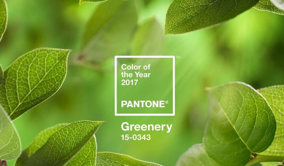 Green, the colour of year